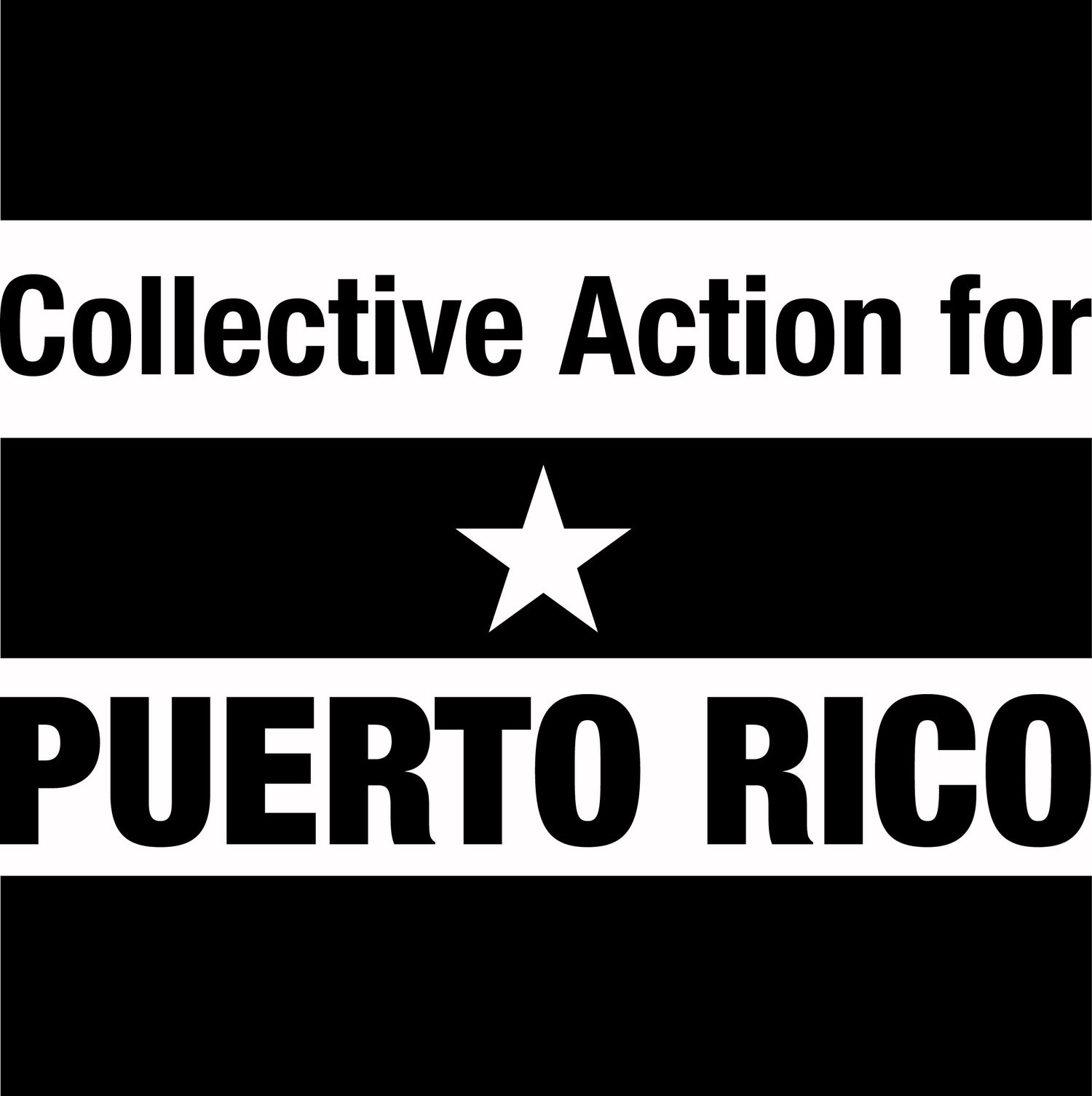 Collective Action for Puerto Rico