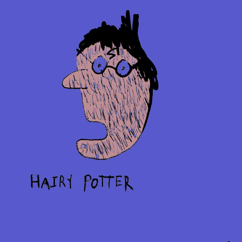 Hairy Potter (not a typo)