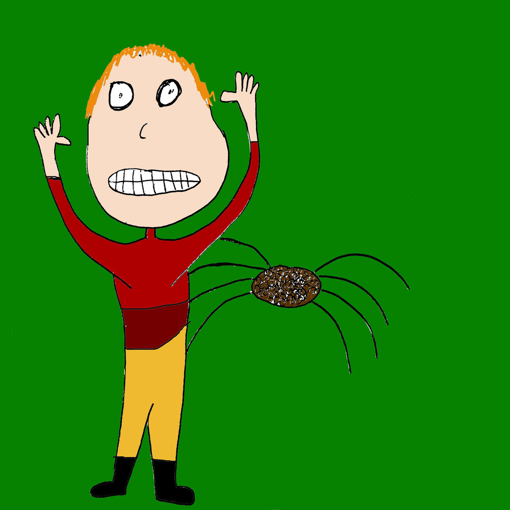 Ron Weasley, maybe with spiders.