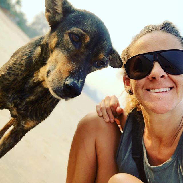 Just another morning with the locals... #pupsforlife #agondabeach #dogsofindia #agonda #beach #sunshine #sand #goodcoffee #morningwalks #morningtalks #connection #walkingwoththeland #mindbodysoul #mindbodymedicine #barefootsoultravellerretreats #love #joinus