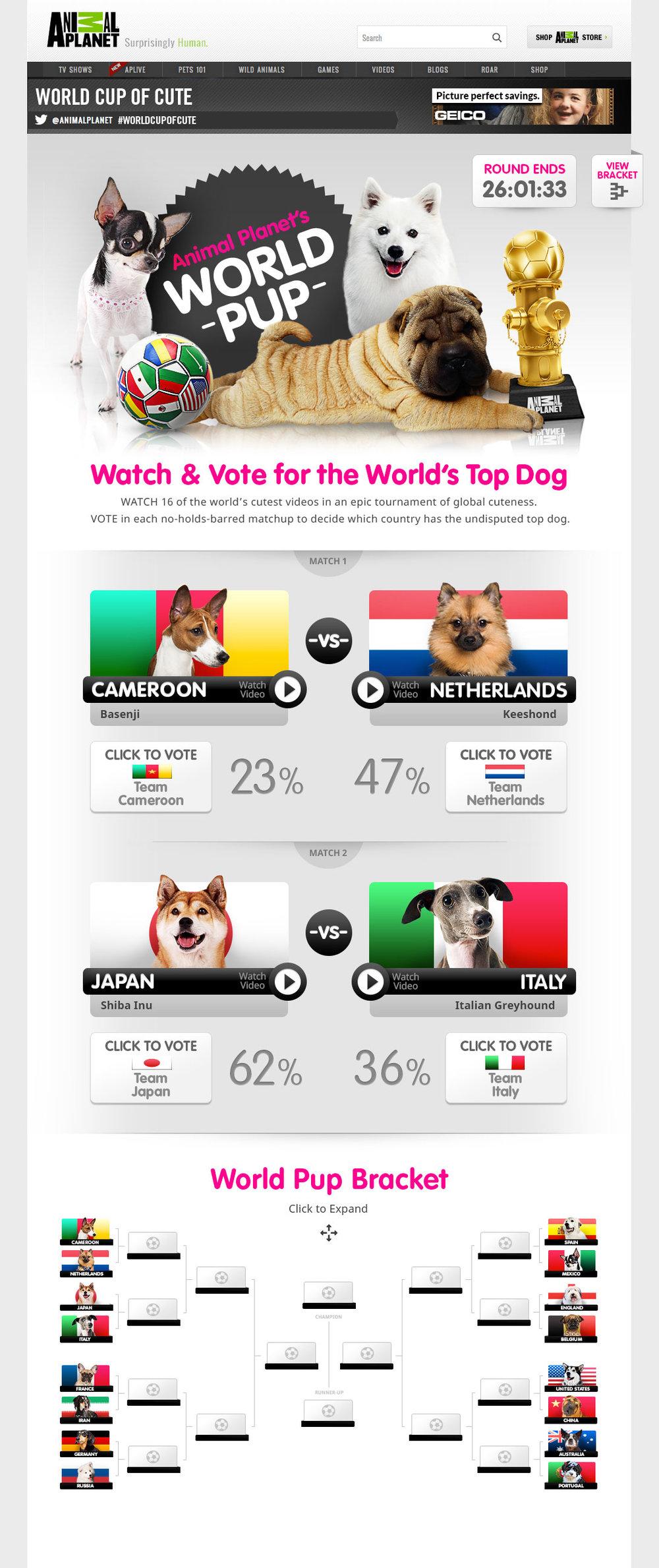 world-pup.jpg