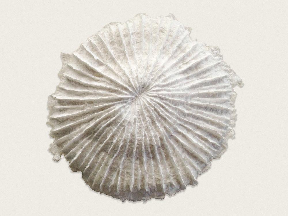 'Coral I'  Handmade paper - approx 35cm x 35cm x 7cm