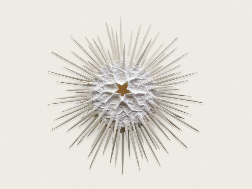 'Urchin I'  Handmade and sculpted paper - approx 38cm x 38cm x 7cm