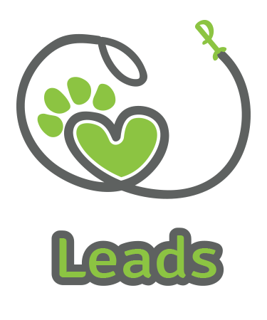 Leads icon.png
