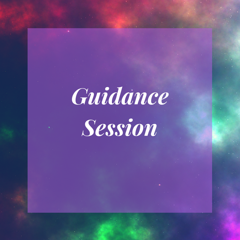 Guidance Session