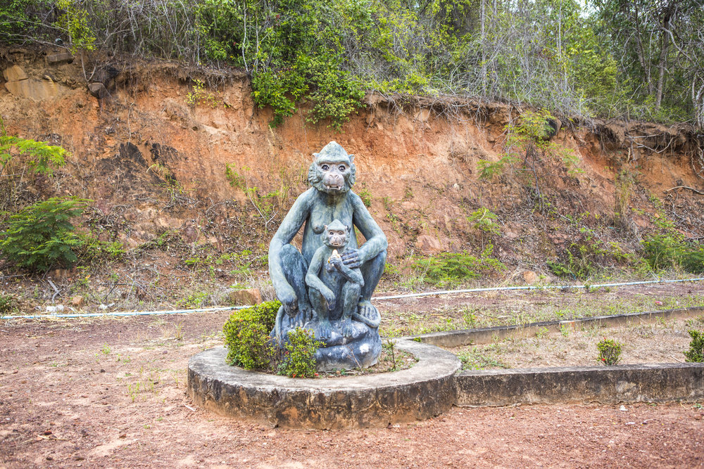 kampot-zoo-monkey.jpg