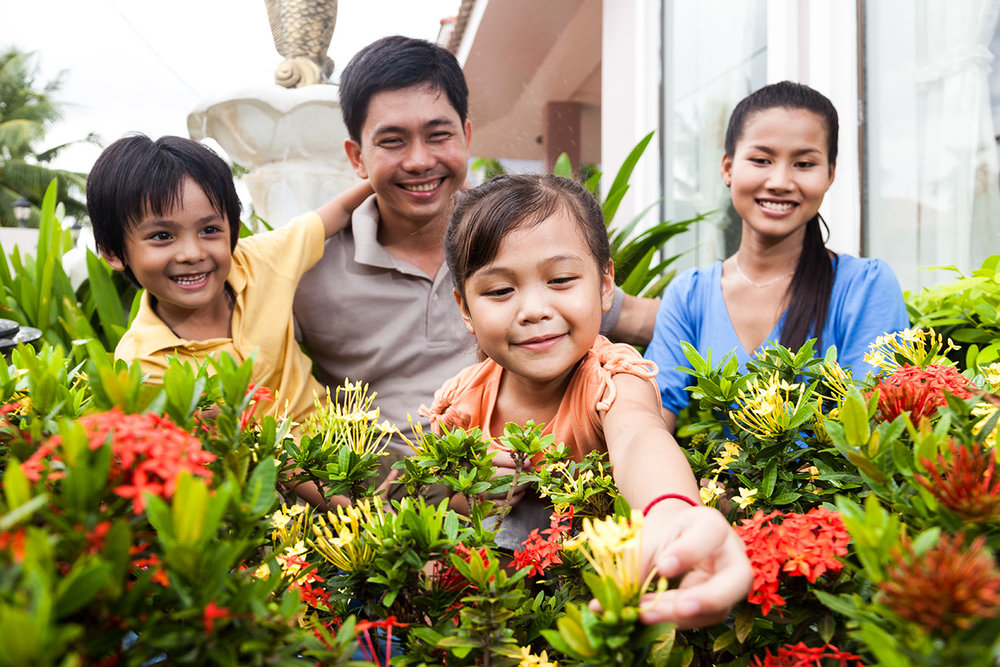 ANZ Royal Home Loan