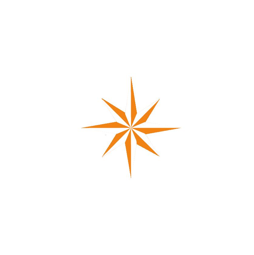 Branding-equanima-estrella-04.png