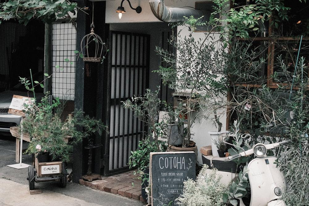 Kinlake-Kyoto-Clamp-Sarasa-Nijo-01.jpg