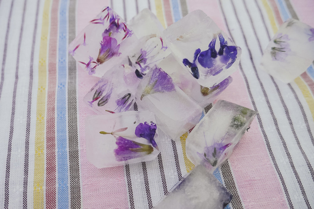 Flower Ice cubes DIY - with spring blossoms