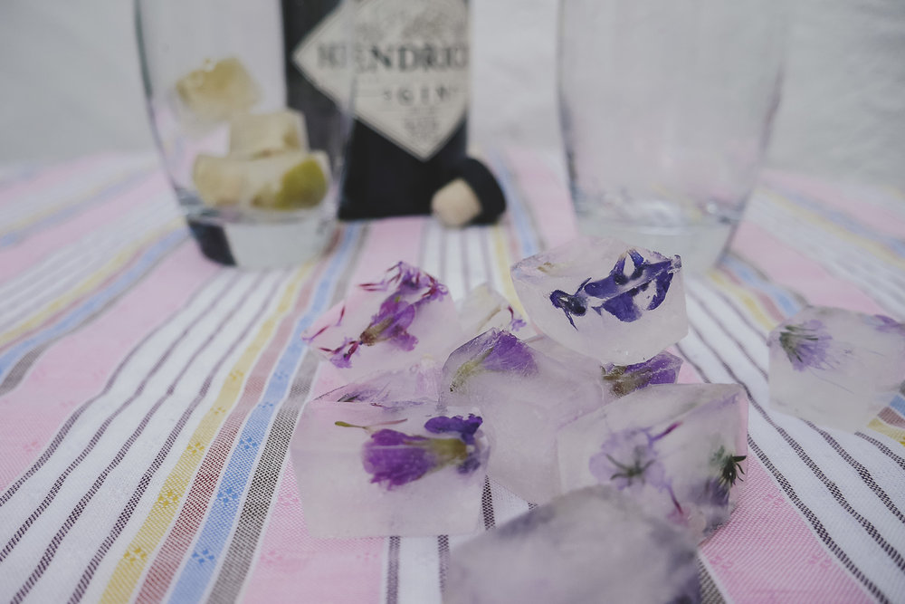 Flower Ice cubes DIY - with spring blossoms - with Hendricks Gin