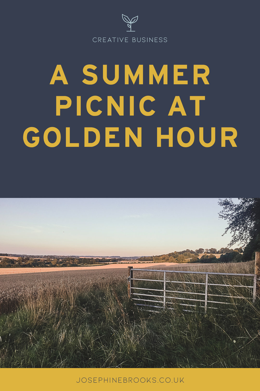 A summer picnic at golden hour, Hampshire countryside, UK