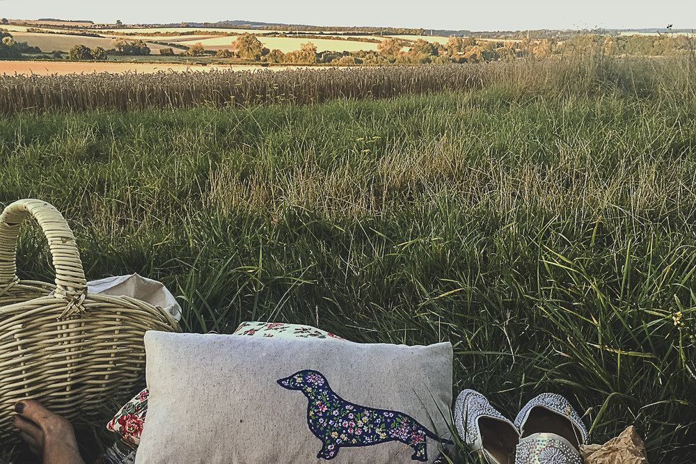 Summer picnic at golden hour with blankets and cushions. A dreamy summer's evening