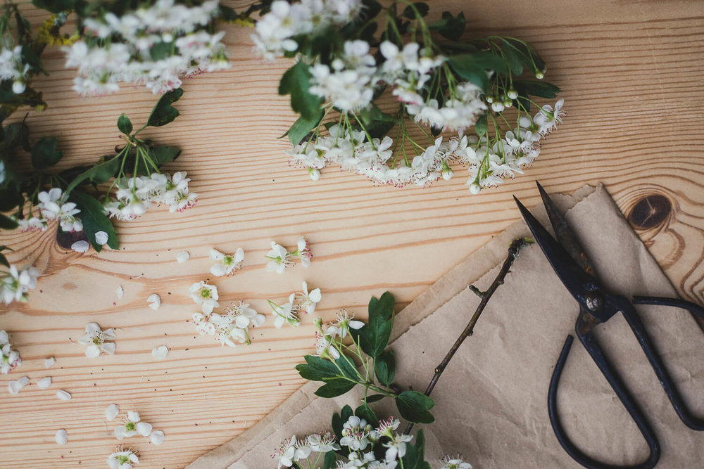 Spring blossom with scissors on a wooden table - Journaling prompts