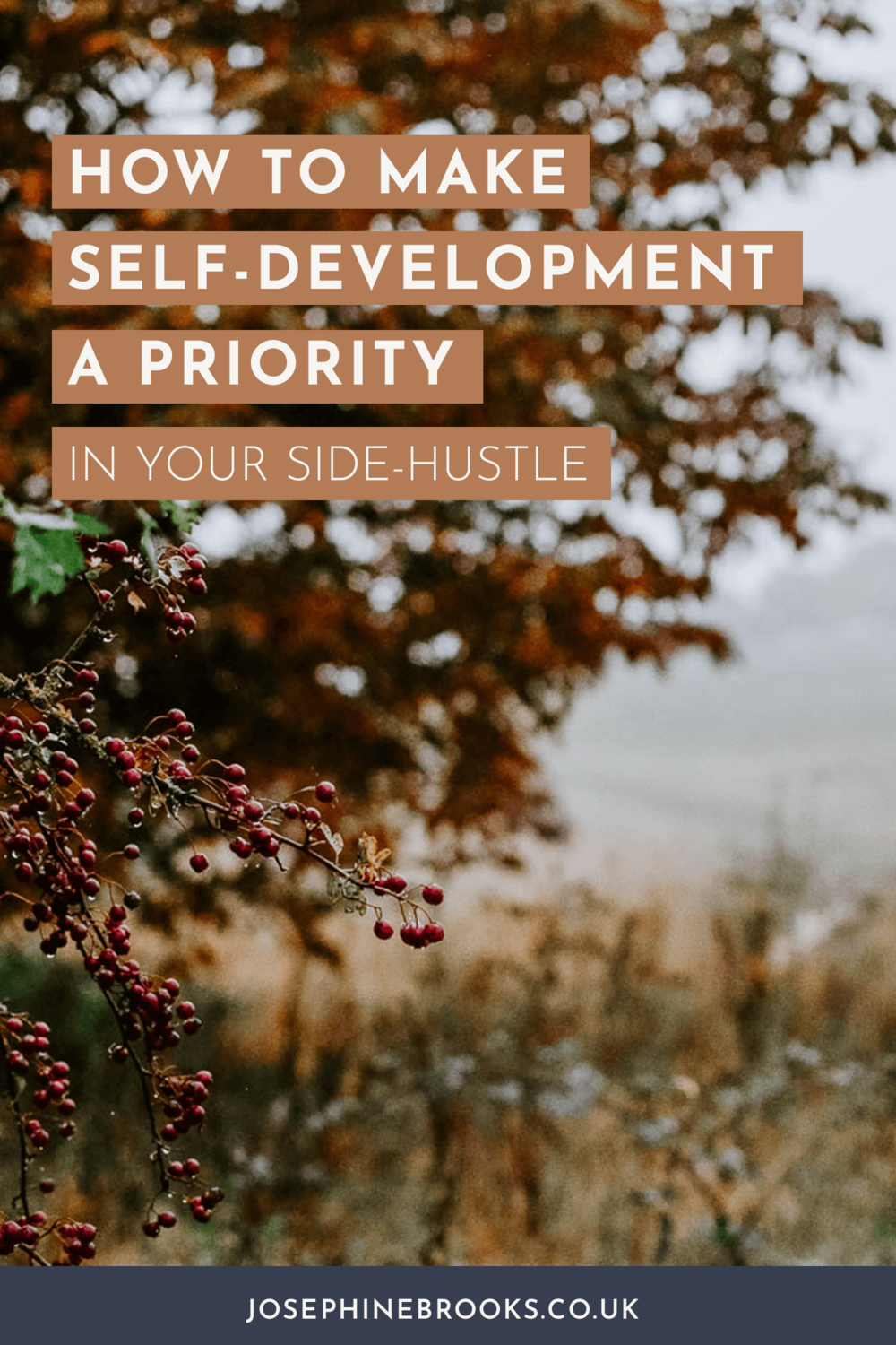 Why Prioritising your own self development is so important, How to find a business coach, How to find a business mentor, How to pick a course, Small business self-development
