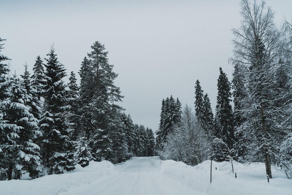 Norrland+Tallbergsbroarna