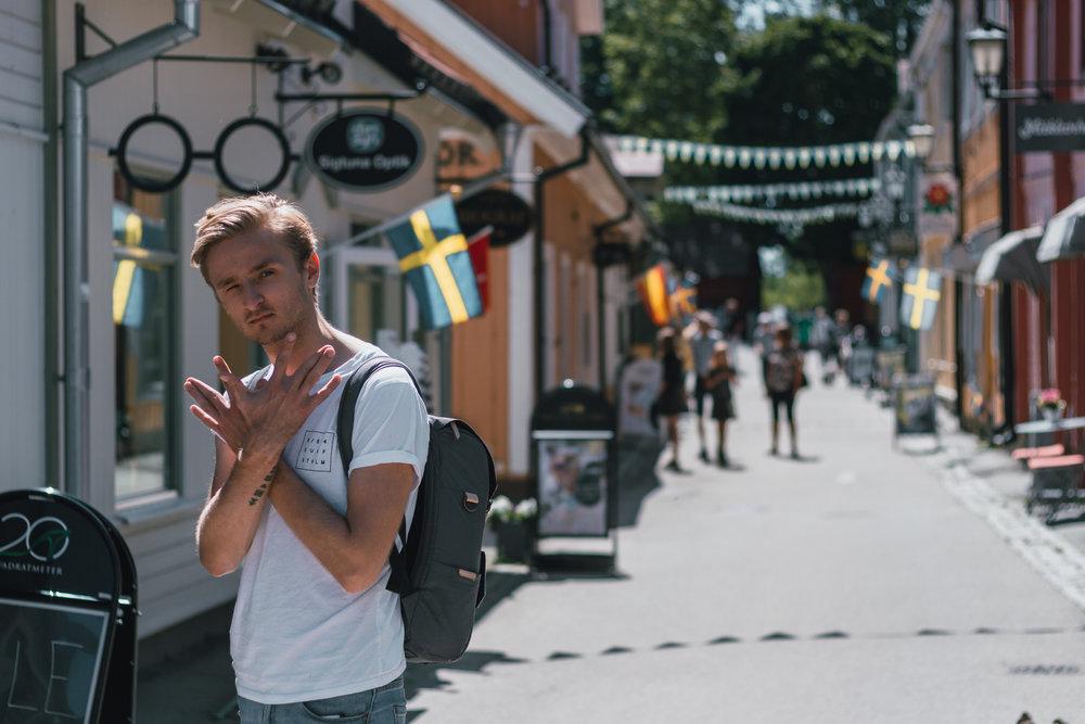 sigtuna+stockholm+dagsutflykt