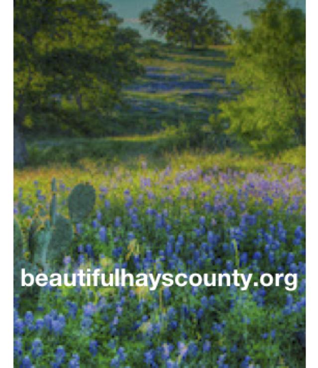 beautifulhayscounty.org