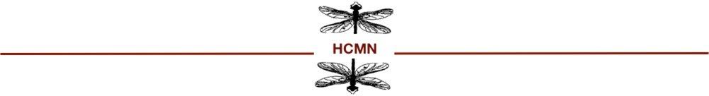 Line Graphic with HCMN Logo.jpg