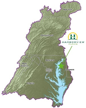 chesapeake-bay-watershed.jpg