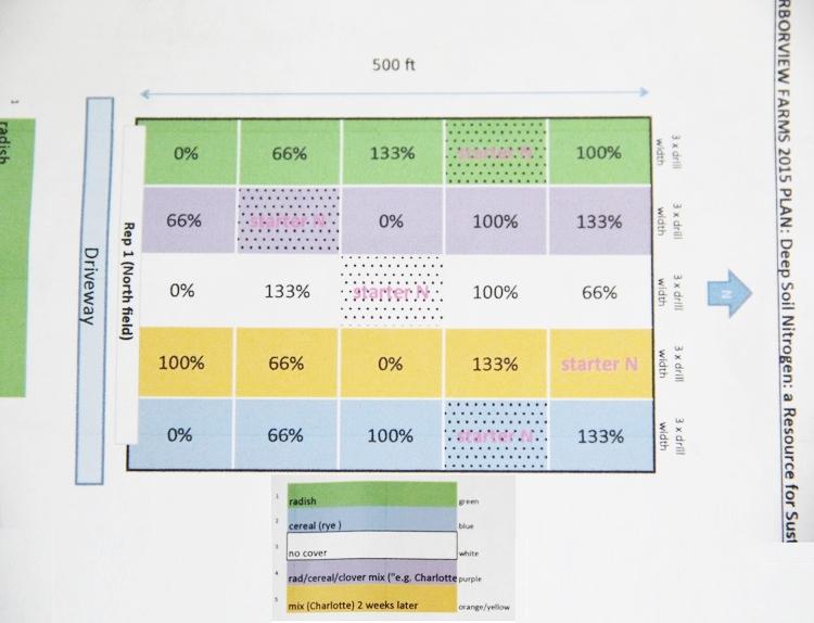 researchplotplan.jpg