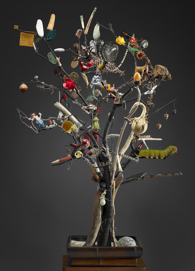 Tree of Life Out on a Limb