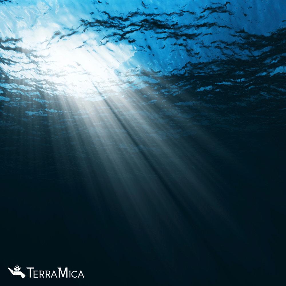 under-water-light-shining1.jpg