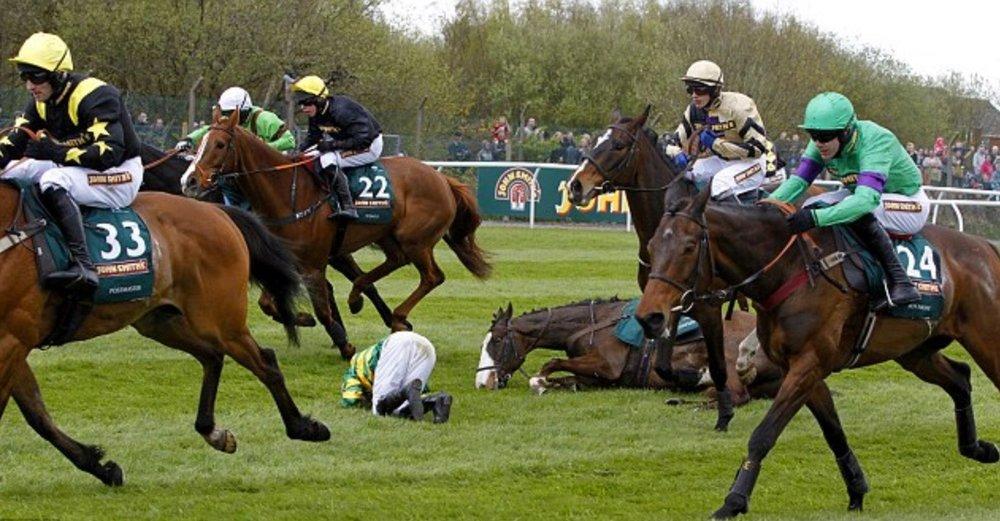 race-horse-down.jpg