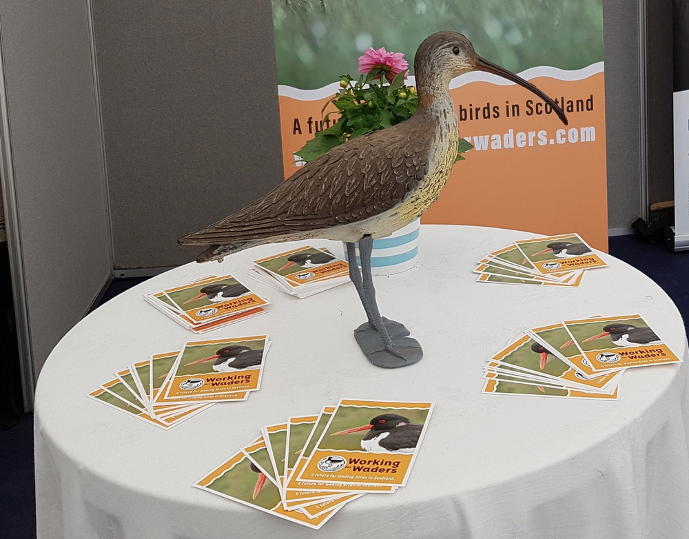 The Working for Waders stand in the NSA Scotland tent