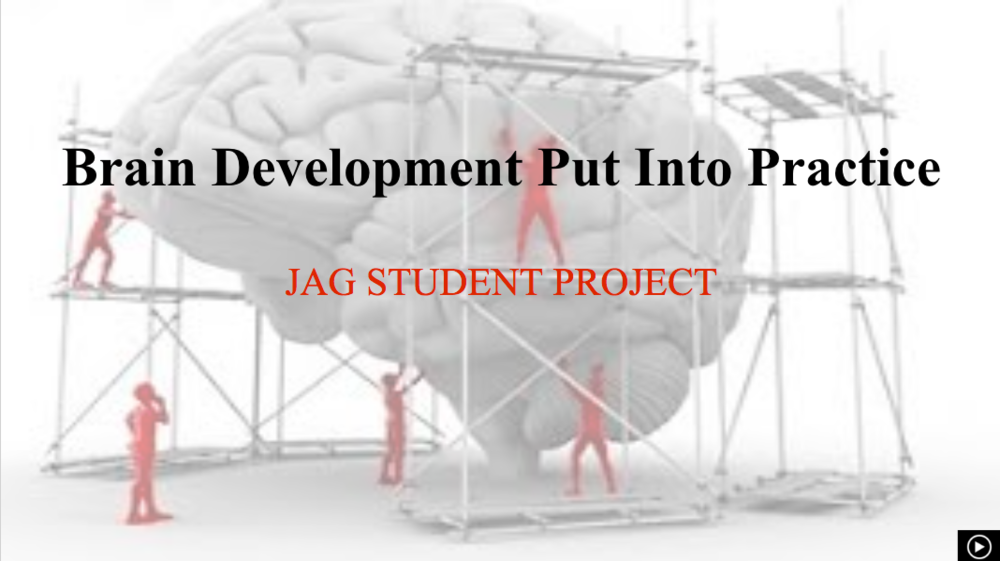 Brain Development Put Into Practice *JAG Student Collaborative Project*