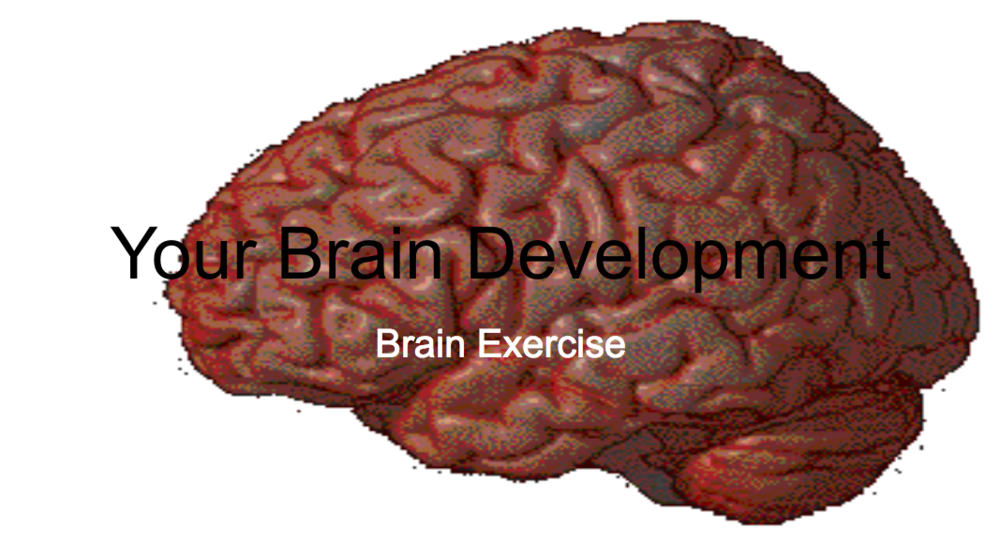 Your Brain Development