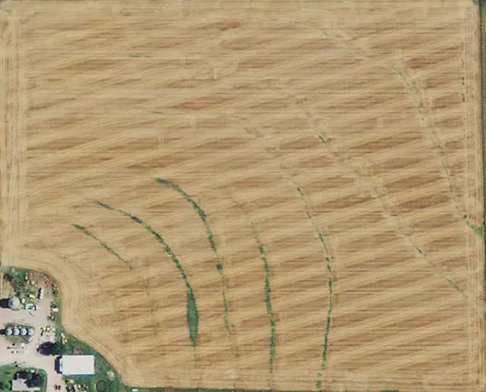 Farm Field Without NDVI.png