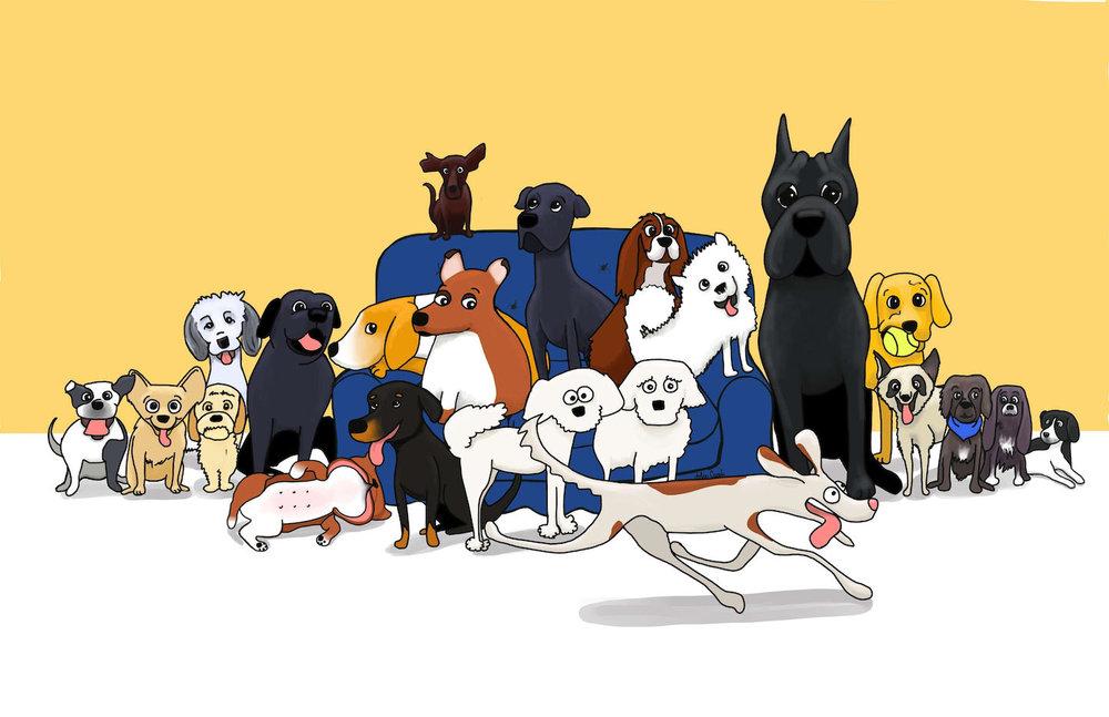 many-dogs-jolie-canoli.jpg