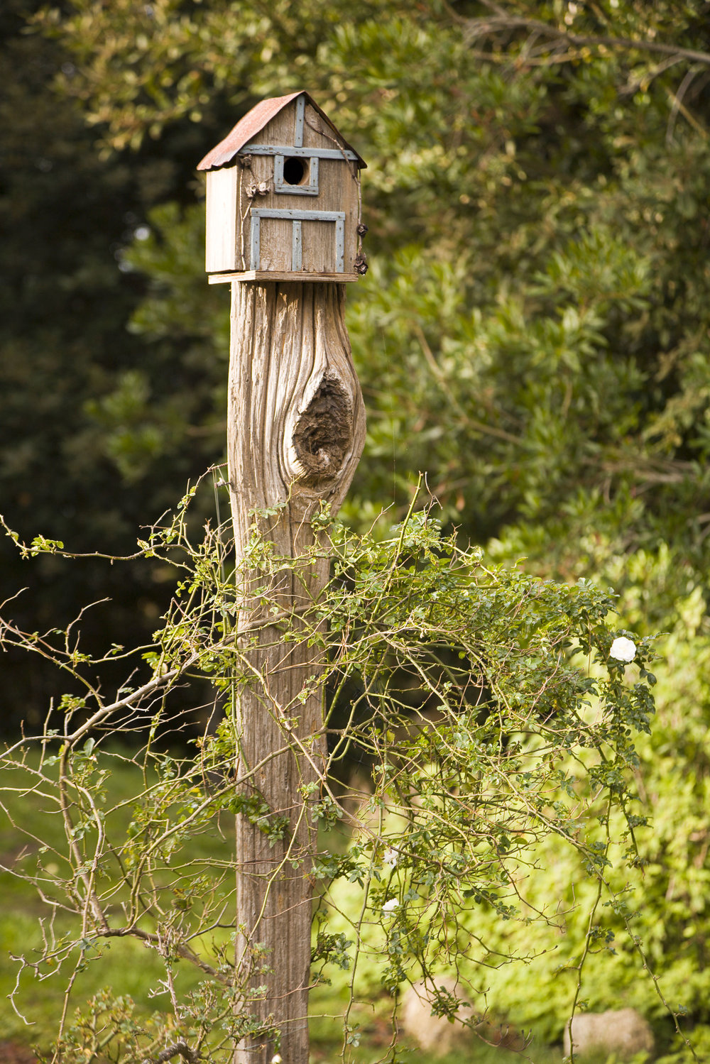 a wooden birdhouse on top of a rustic post