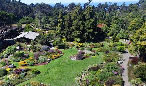 The Mendocino Coast Botanical Gardens with lawns, gardens, and trees, with the Pacific Ocean in the distance.