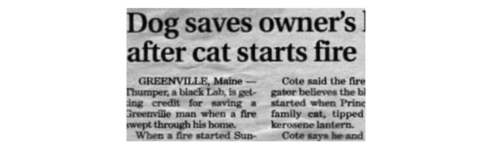 Newspaper clip: Dog saves owner's / after cat starts fire: Greenville, Maine