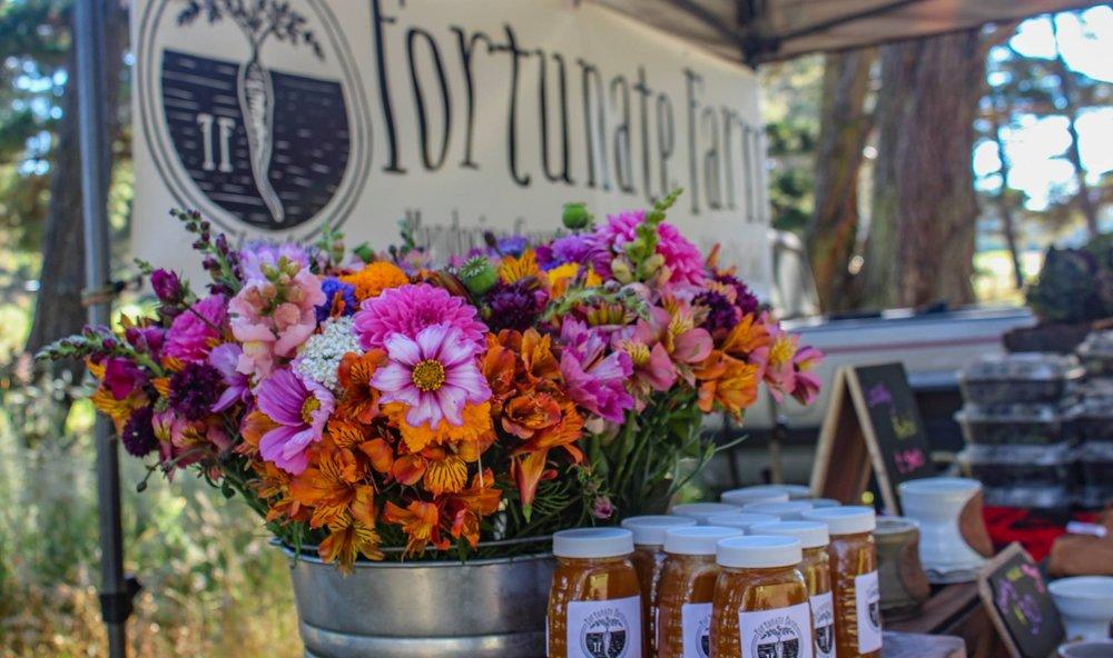 Fortunate Farmstand