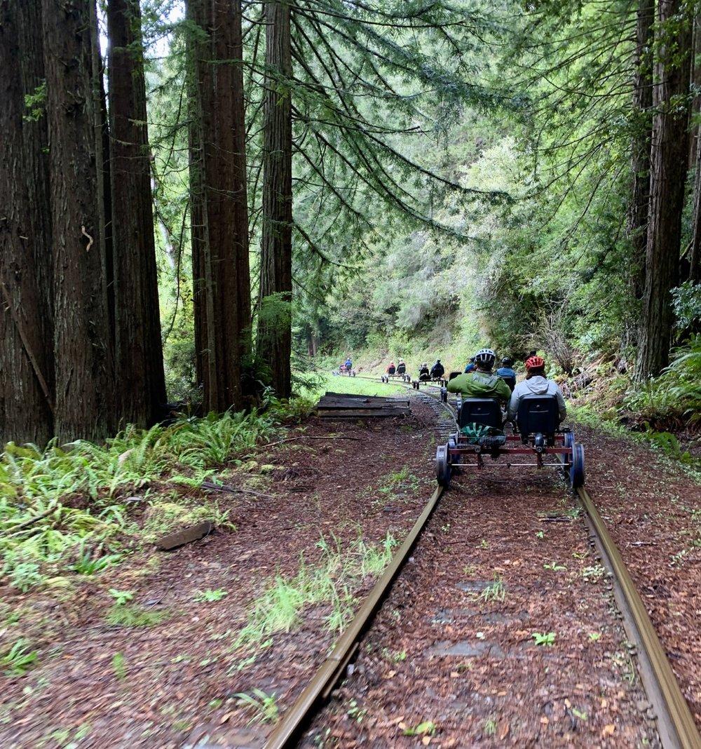 The Skunk Train Rail Bikes