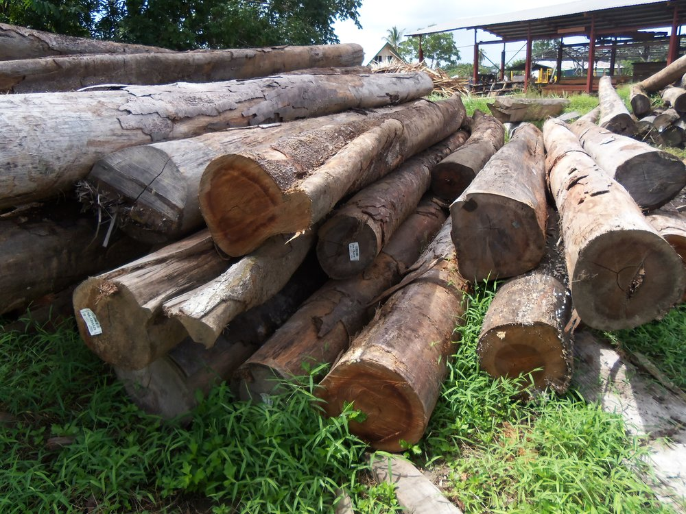 Suriname 085.JPG