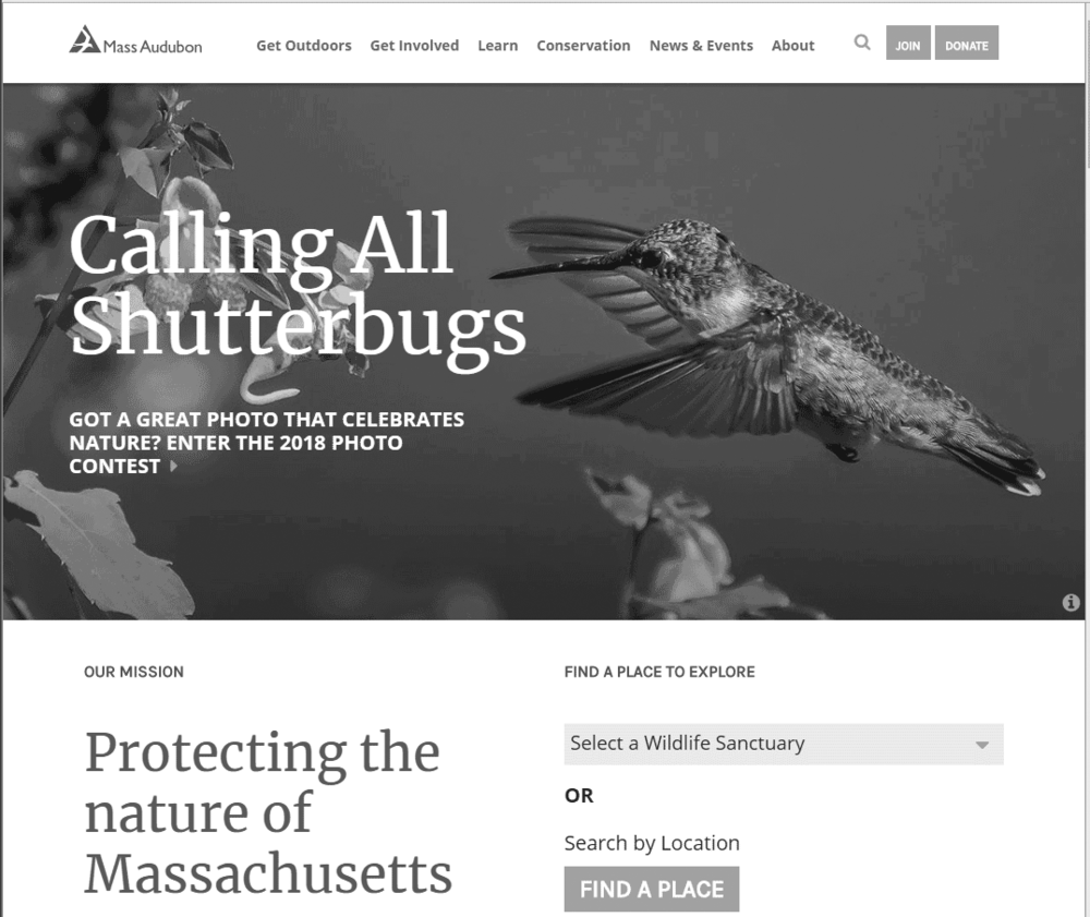 massaudubon_website_gray.png