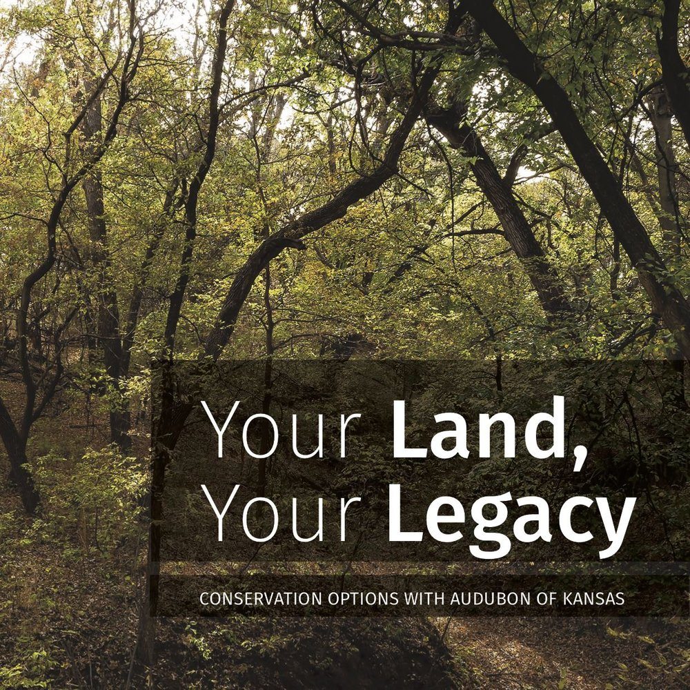 Conservation Options - There are many ways you can work with Audubon of Kansas (AOK) to ensure that your land is managed in perpetuity to benefit biodiversity, preserve natural habitat, reflect family history, and maintain the characteristics of a wildlife-friendly working farm, ranch, or other property.