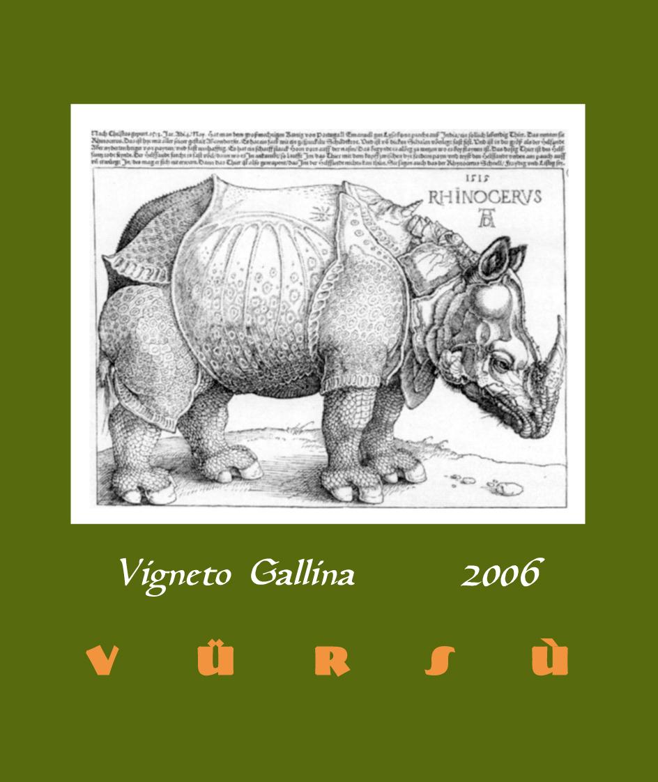 Vigneto Gallina 2006.jpg