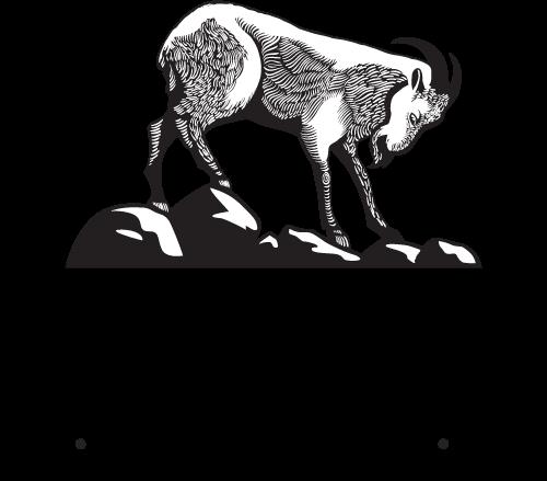 Stubborn Goat