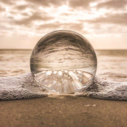 beach-macro-nature-831890.jpg