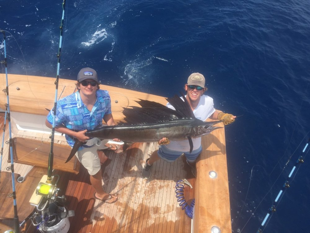 7416-sailfish5-1024x768 (1).jpg