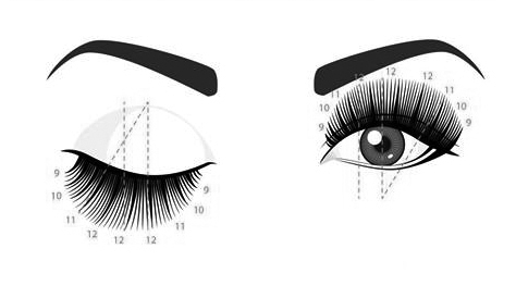 1094b970d3f DOLL EYE - Our most dramatic style is achieved by placing the same length  of lash