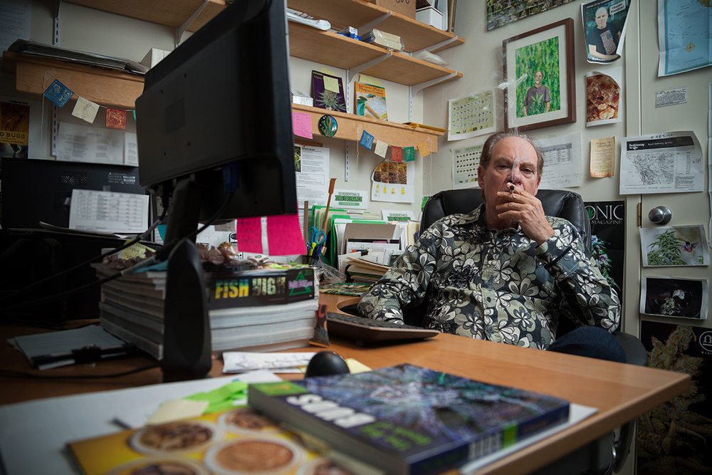 Ed Rosenthal in his office. Photo by Photo by Fred Morledge –  Dabsel.com