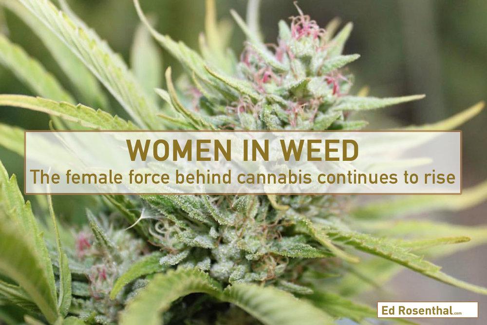 Ed_Rosenthal_women_grow.jpg