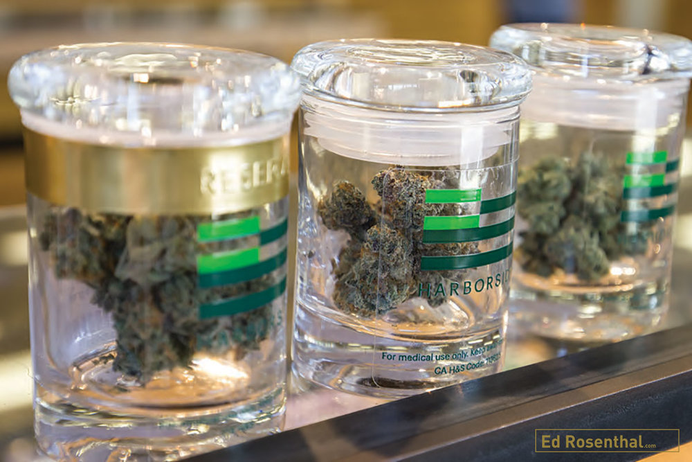 Top shelf bud stored in glass jars at  Harborside Health Center.