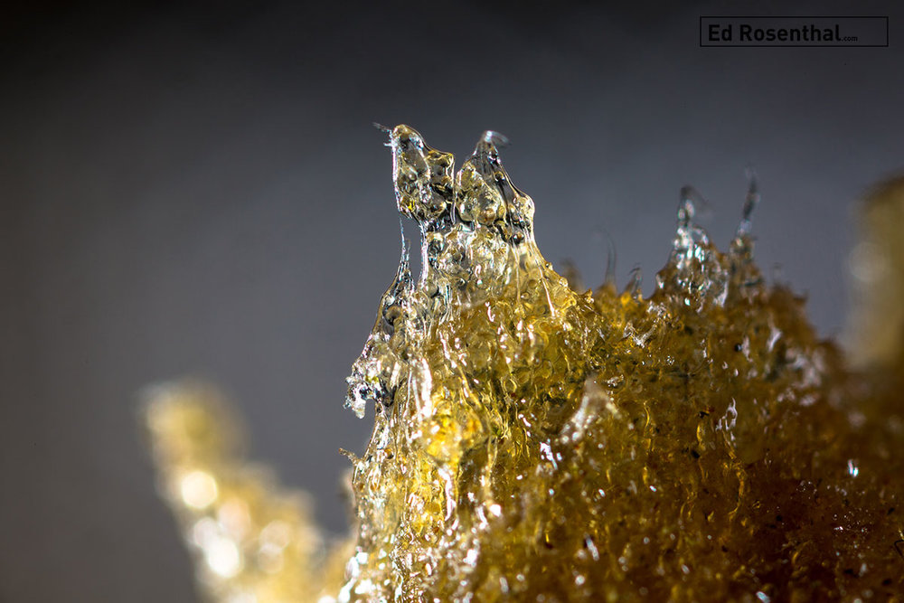 Water hash magnified. Photo:  Marcus Bubbleman